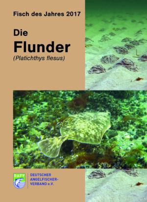 fdj_2017_-_die_flunder_cover