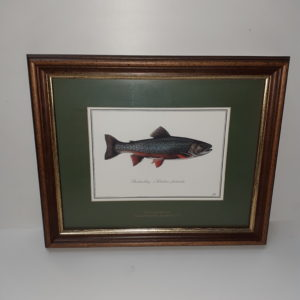Fischbilder im Holzrahmen